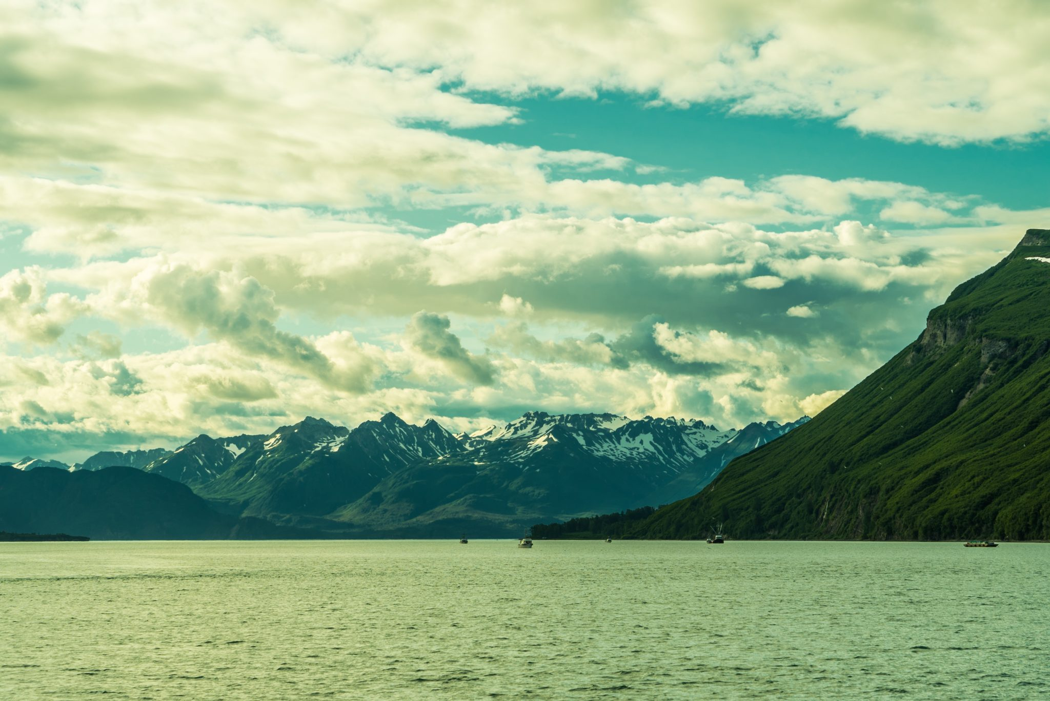 alaska-tuxedni-bay-snug-harbor-DSC06249