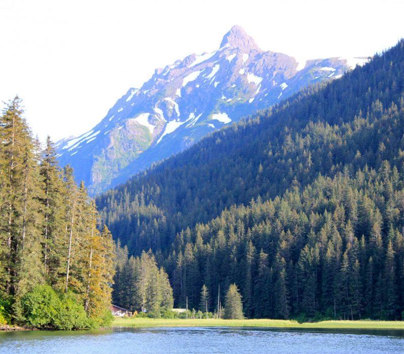 wilderness lodge in alaska