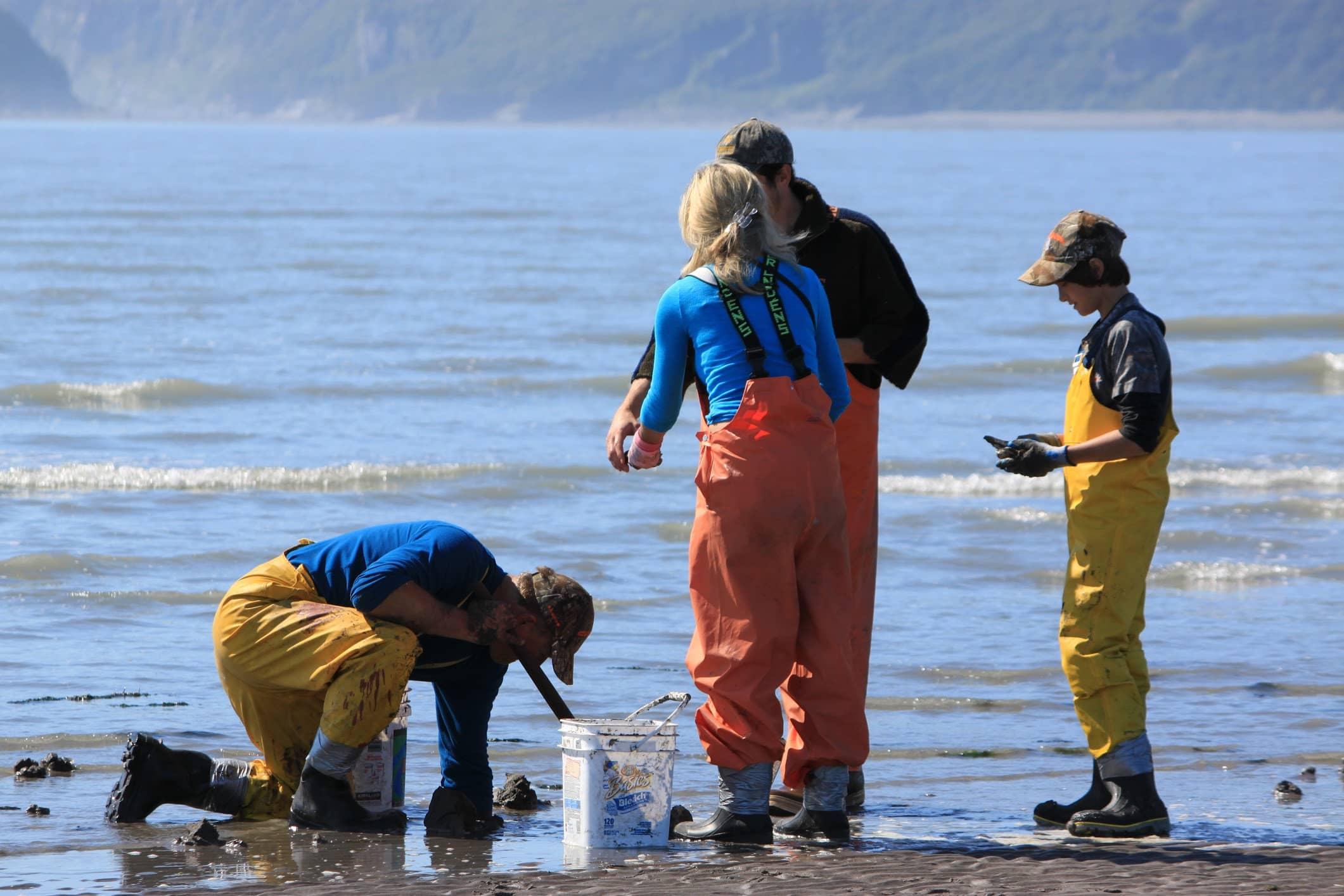 clam digging in snug harbor alaska